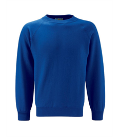 Alfred Street Embroidered Childrens Crew Neck Royal Blue Sweatshirt
