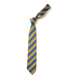 Regular School Tie