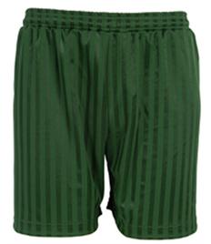 Plain Bottle Green Shadow Stripe Shorts