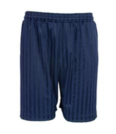 Junior Plain Navy Shadow Stripe Shorts